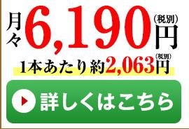 竹3本コース
