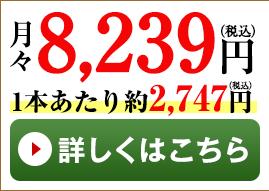 松3本コース