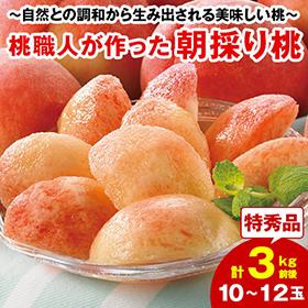 お中元・夏ギフト2020年おすすめ_桃職人が作った朝採り桃3kg】