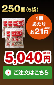 【ネット限定】大阪王将よくばり餃子セット250個