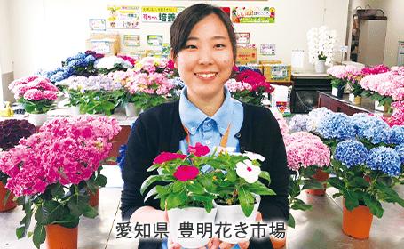 花市場イチ押しの品種入り