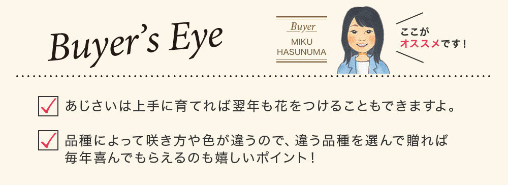 Buyer's Eye