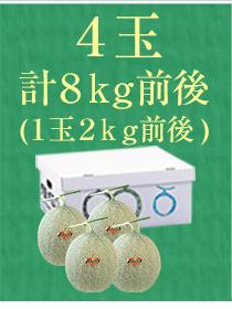 4玉(8kg)