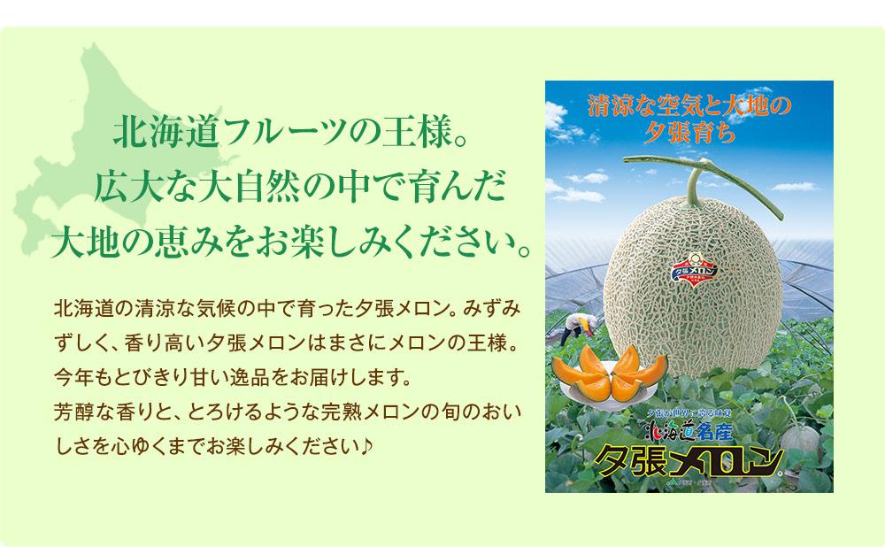 北海道フルーツの王様。夕張メロン