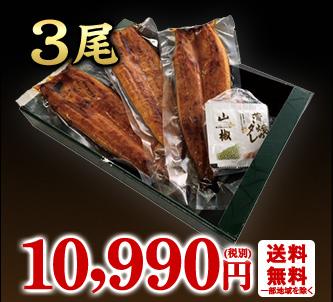鹿児島県産うなぎ蒲焼3尾
