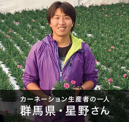 安心の新鮮品質 カーネーション栽培の達人が想いを込めて作るギフト