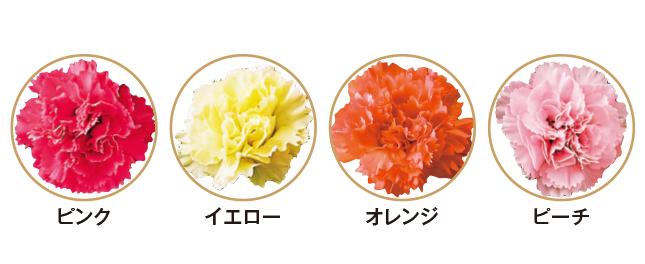 4色のお花
