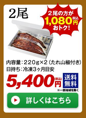 メガ!超特大!鹿児島県産うなぎ蒲焼き 2尾