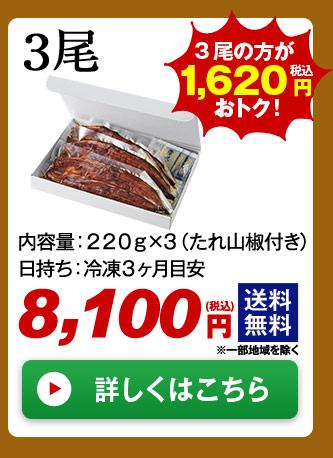 メガ!超特大!鹿児島県産うなぎ蒲焼き 3尾