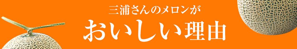 三浦さんのメロンがおいしい理由