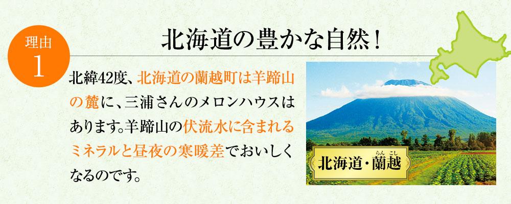 北海道の豊かな自然!
