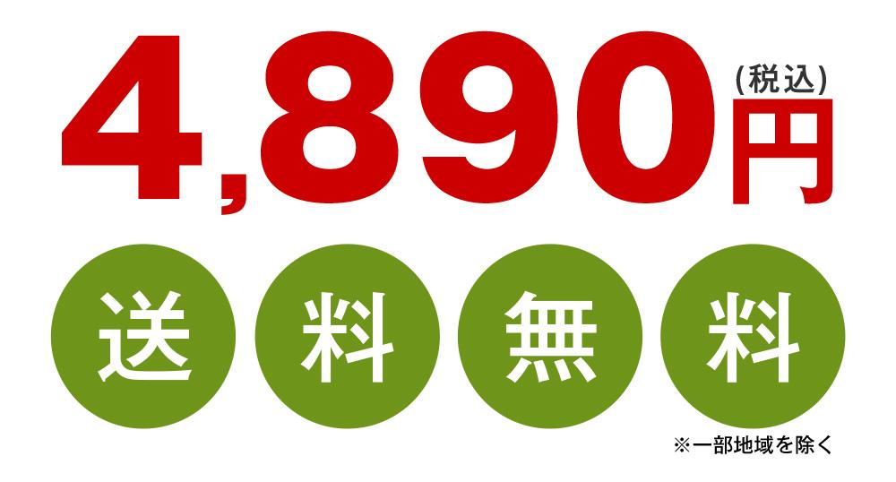 超早期割引価格3,790円