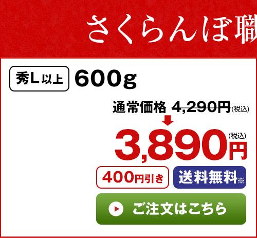 さくらんぼ職人の佐藤錦600g